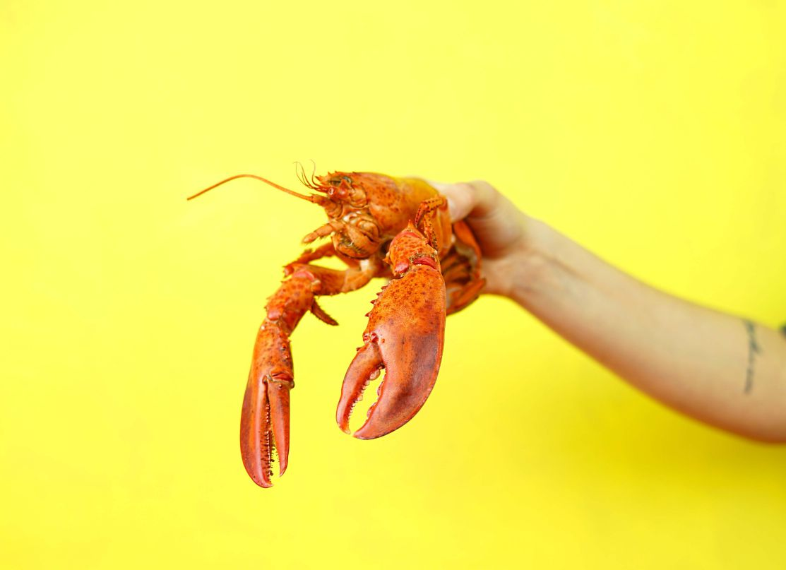 Is It Possible to Grill Lobster?